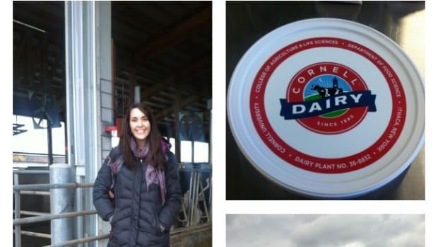Dairy Tour
