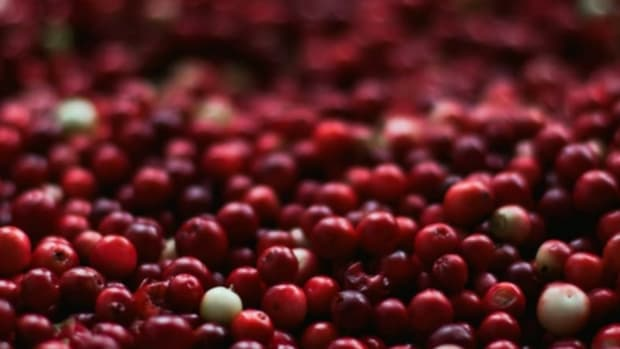 recipes with fresh cranberries