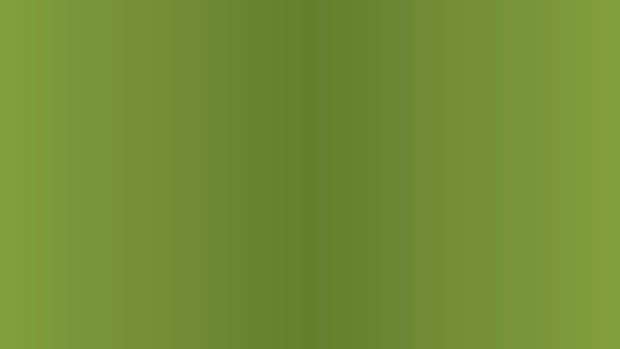 green dot banner