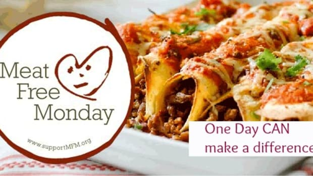 meat free monday banner