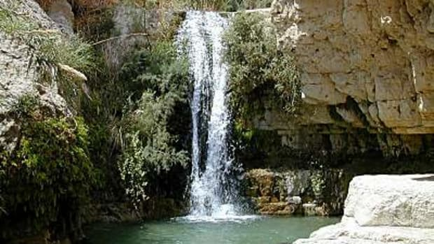 En_Gedi_Nahal_David_waterfall_tb_n040900-1