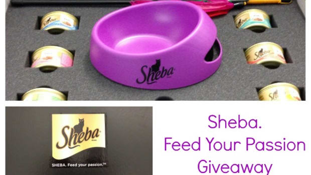 sheba cat food prize