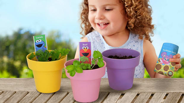 Gardening with Elmo