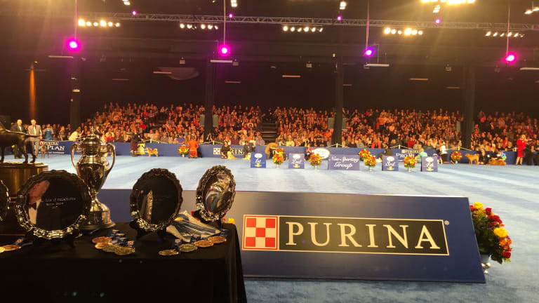 #DogThanking at the National Dog Show Presented by Purina