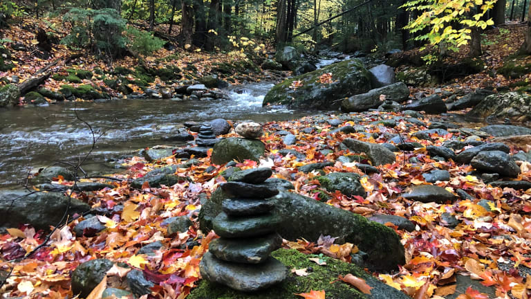 Autumnal Equinox: 5 Ways to Celebrate Fall