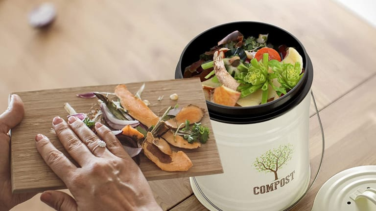 Family Composting Five Things to Consider