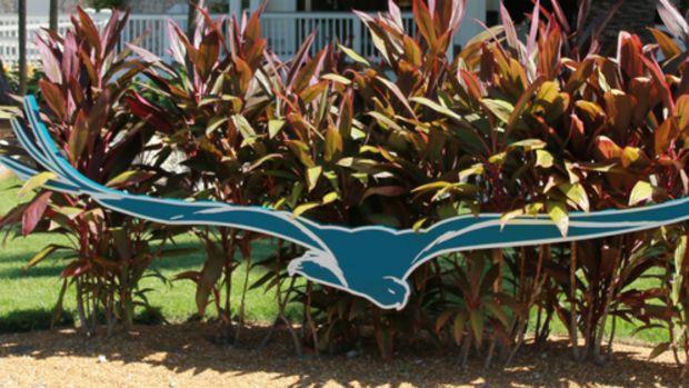 hawks cay, hawks cay resort, vacation, family vacation, florida keys, duck key, travel to florida keys, lagoon