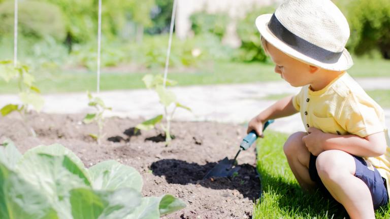 3 Ways to Get Kids Excited About Gardening