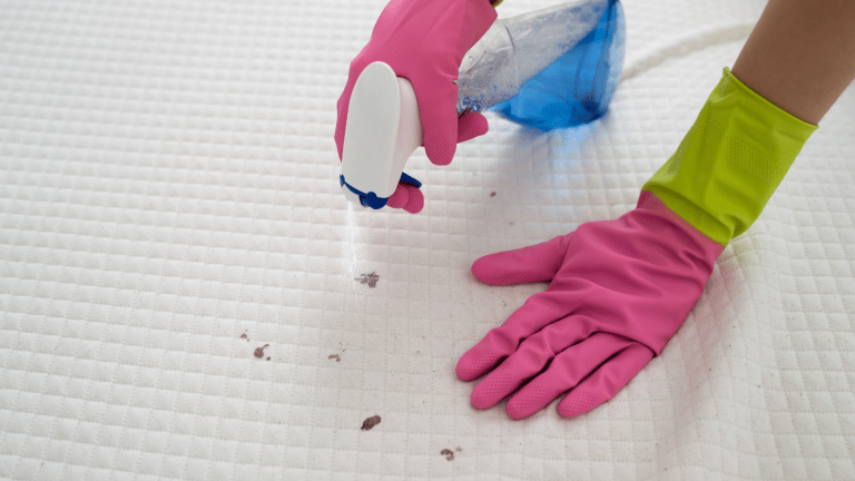 Stain Solver: A Multifaceted Organic Cleaning Product