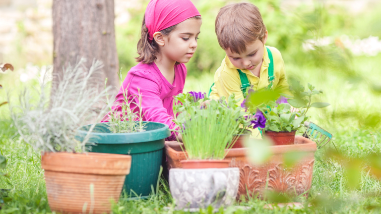 Family Gardening Projects