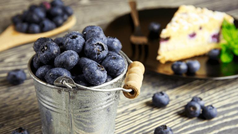 Blueberry Brunch Cake