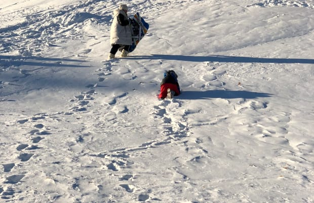 Sleds, Sleighs, and Snow-Day Toys