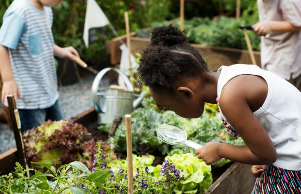 How to Get Kids Gardening