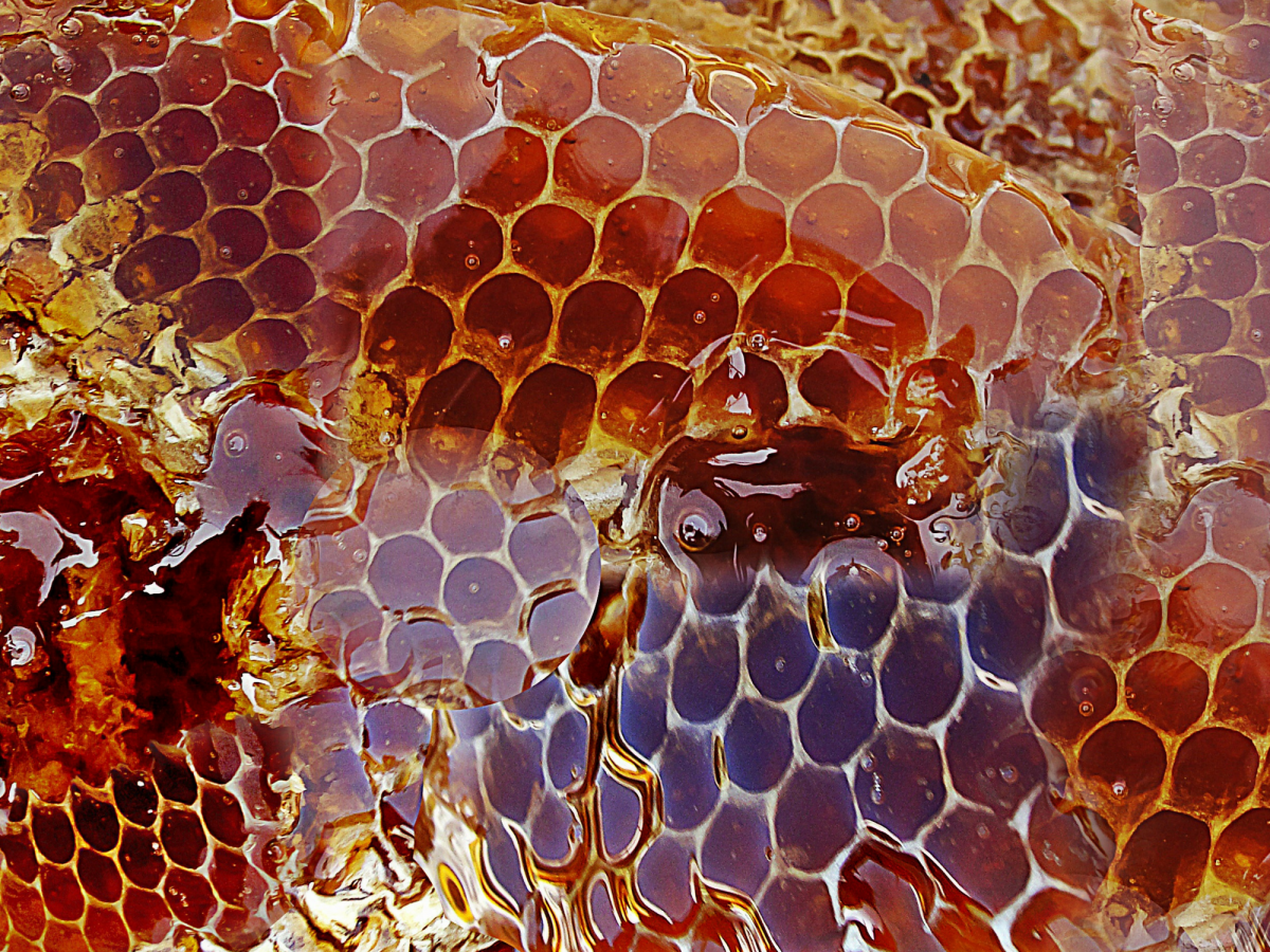 best uses for honey, honey skin care, honey, honey efficacy, how to use honey, best way to use honey, beeline honey products, cooking with honey, liberty science center