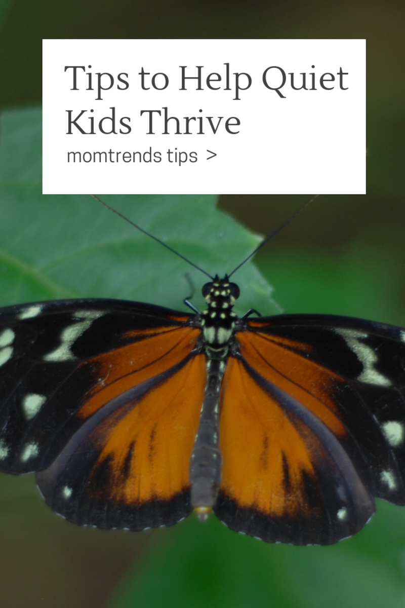 Tips to Help Quiet Kids Thrive