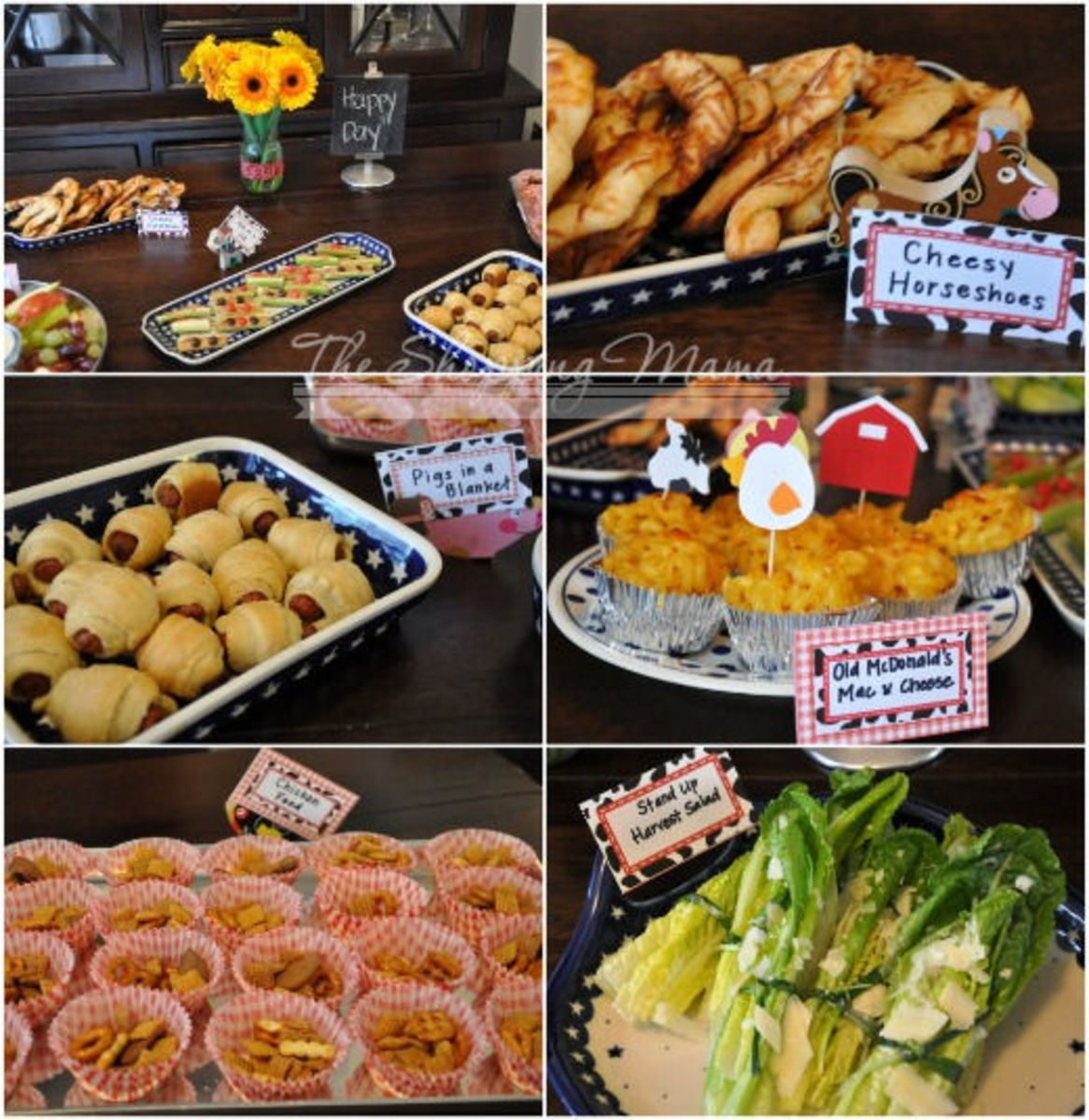 farm birthday party food