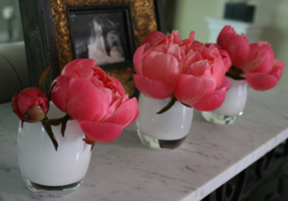 001-peonies with green gb- unlit