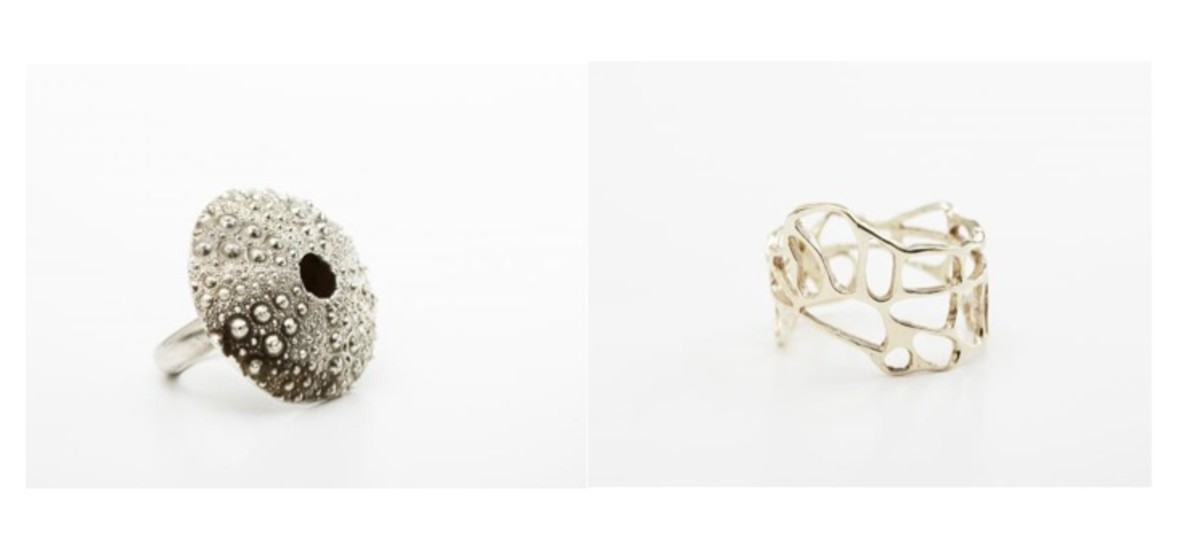 Hatch rings 1