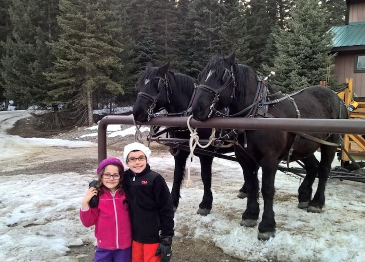 horses at lone mountain ranch