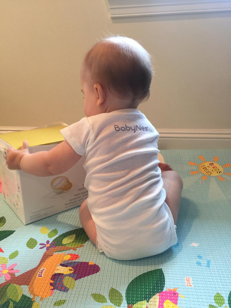 gerber baby nes formula