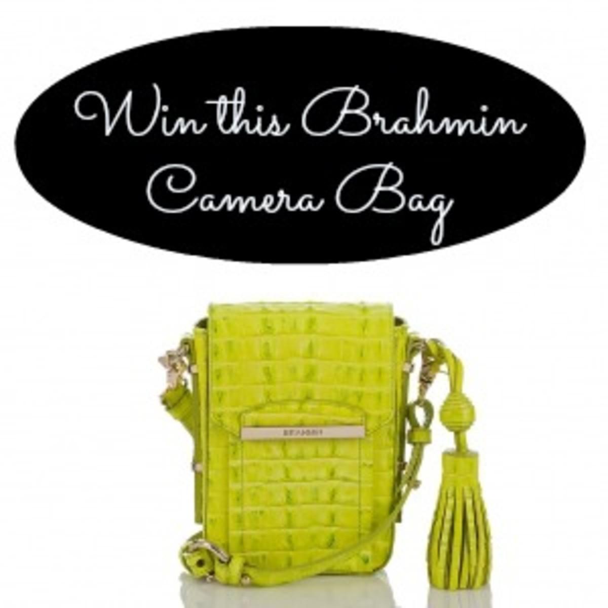 brahmin camera bag