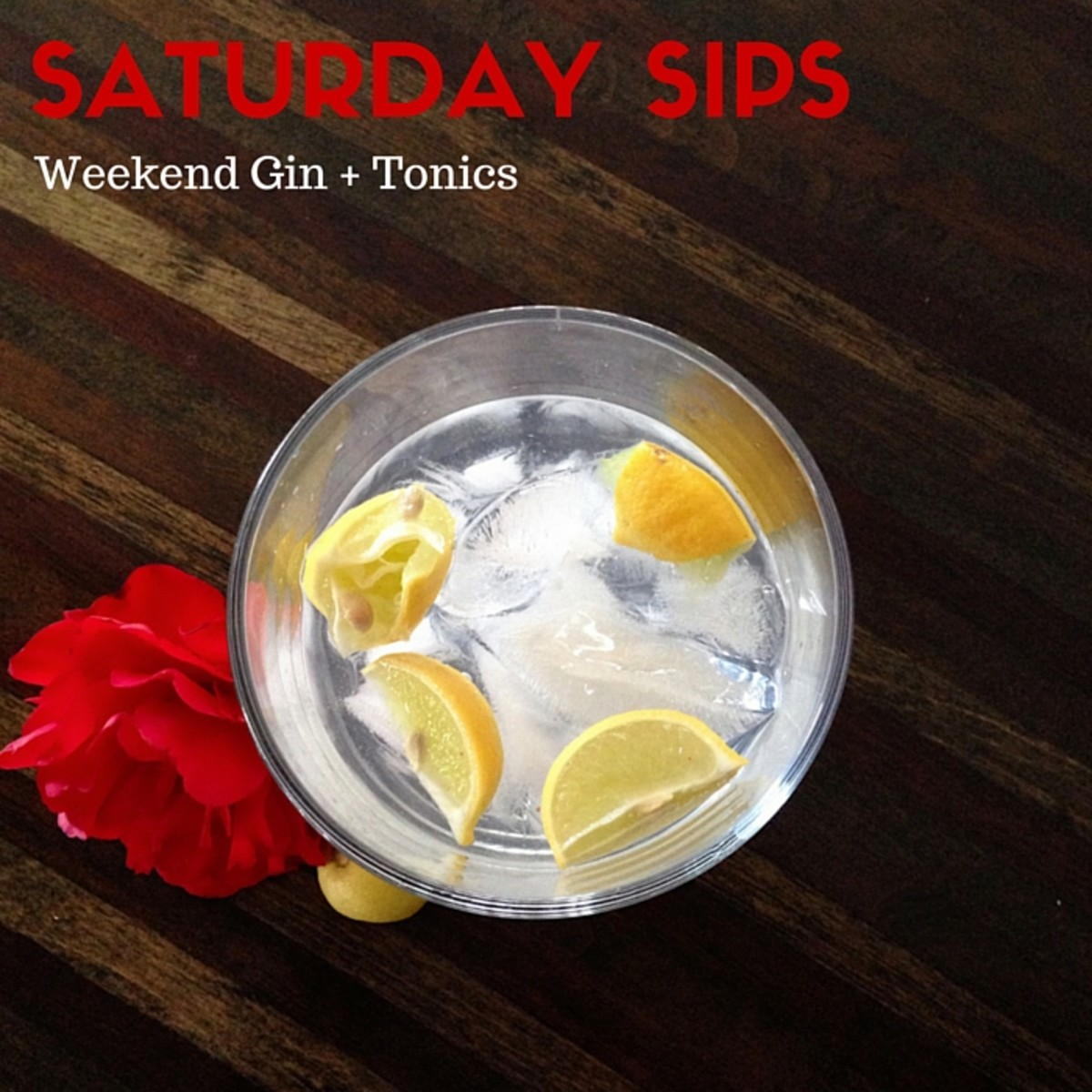 Saturday Sips Gin + Tonics