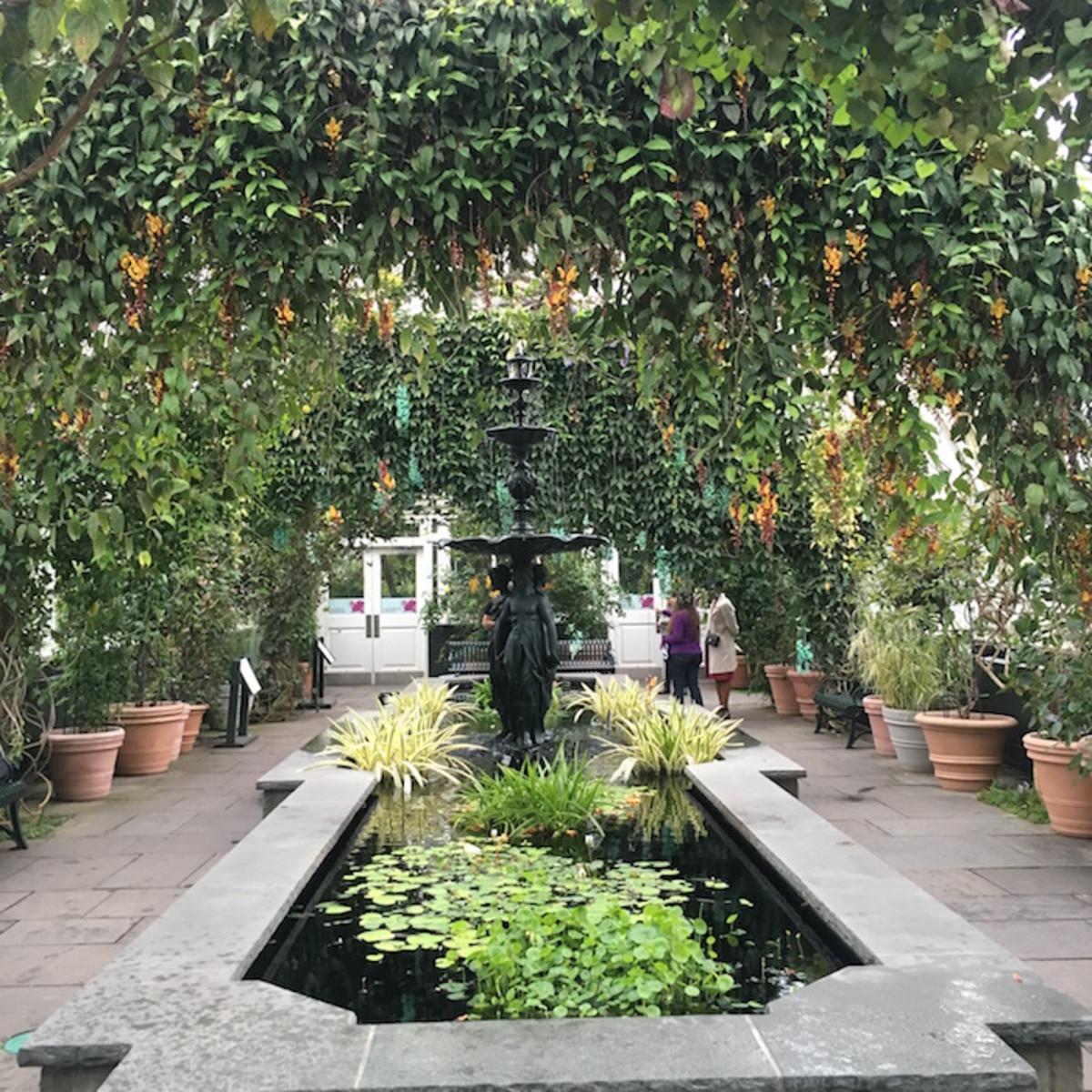Botanic Garden Orchid Show