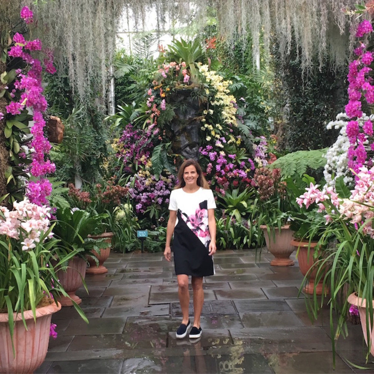 orchid show botanic garden