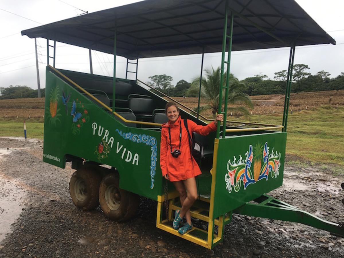 pineapple plantation tour costa rica