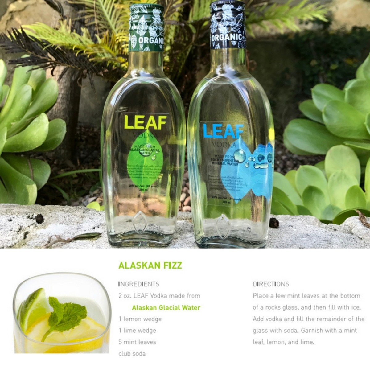 LEAF_Vodka