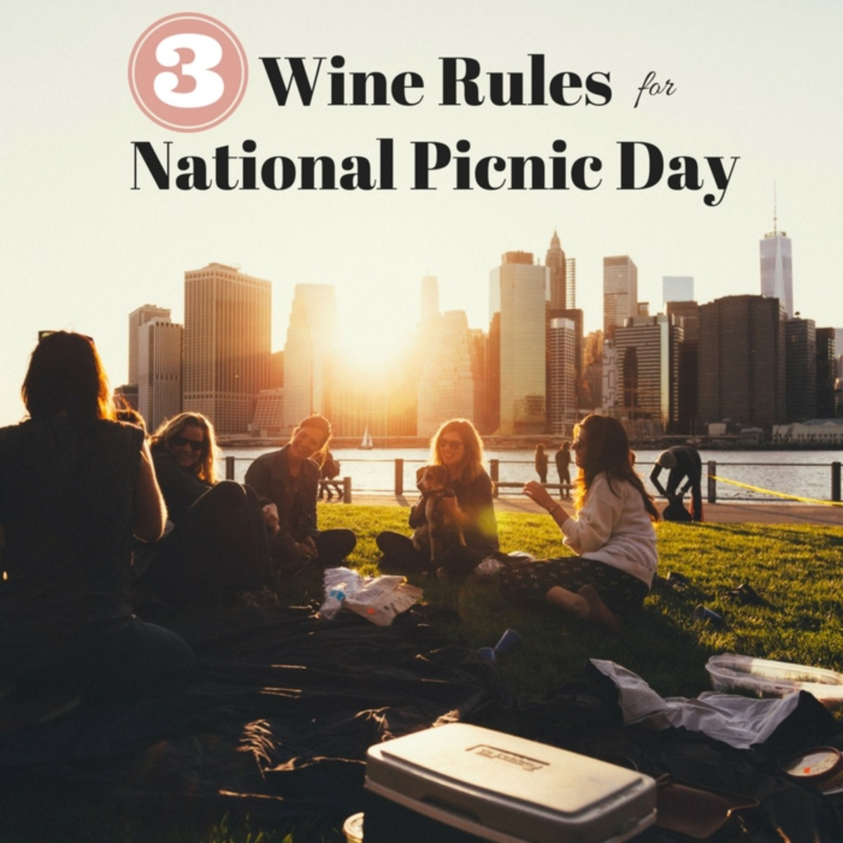 Wine Rules for National Picnic Day