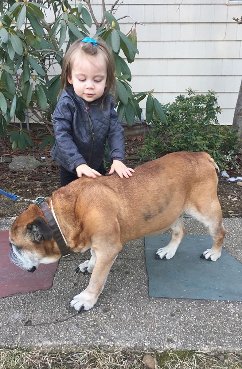 penelope and bulldog