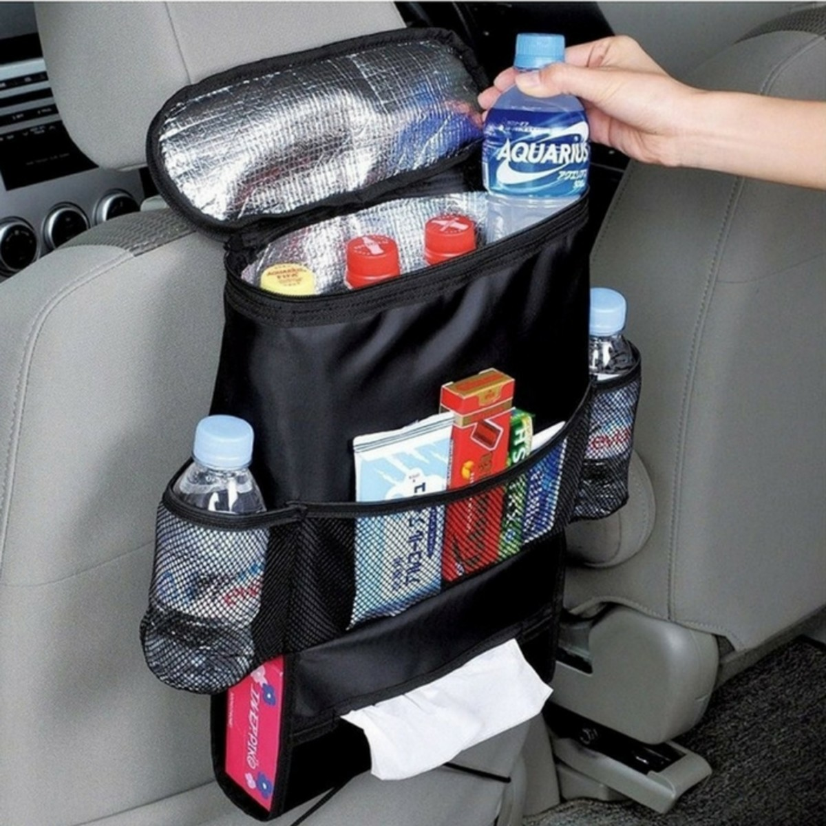 Backseat Organizer with Cooler