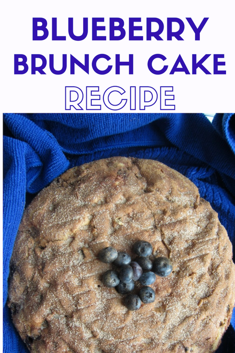 BLUEBERRY BRUNCH CAKE: EASY RECIPE FOR BRUNCH