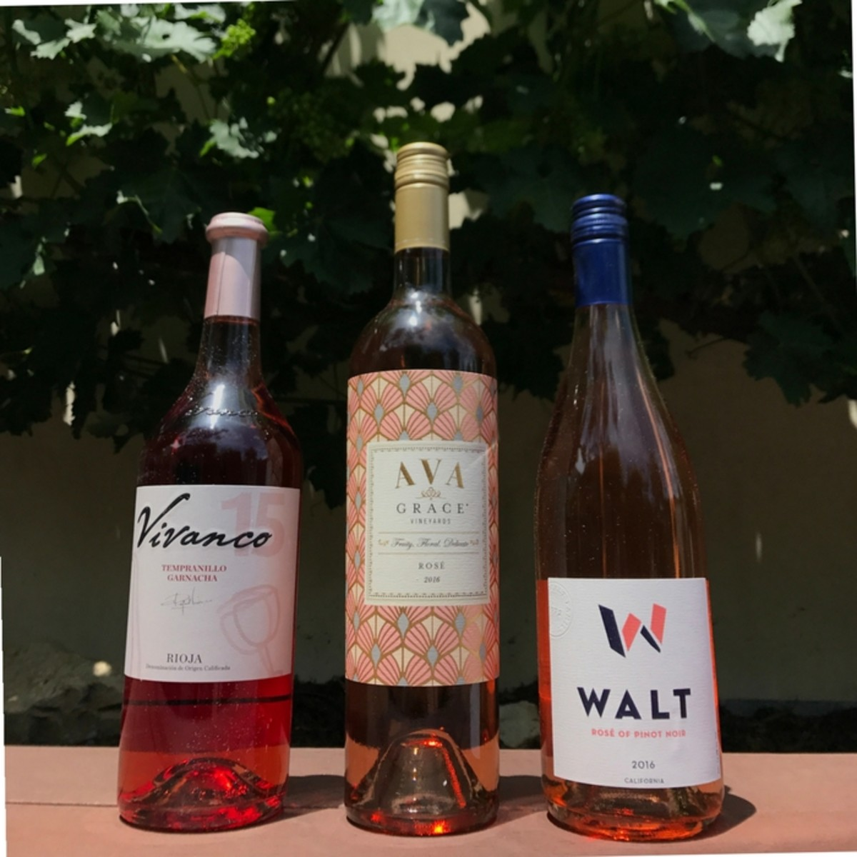 Rosé wines to try