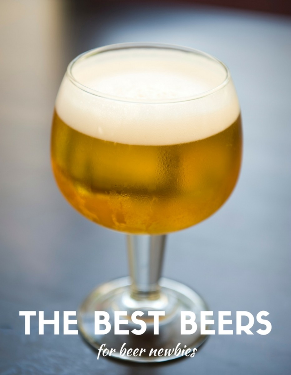 Best Beer for Beer Newbies