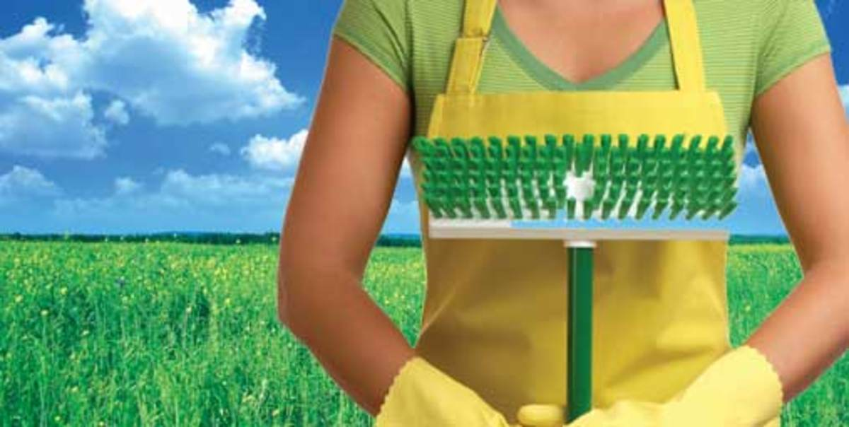 Clean the green way - (Image Credit: columbusofficeclean.com)