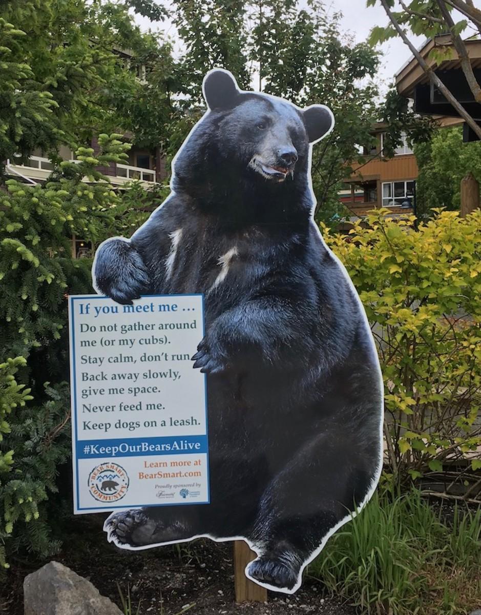 bear warnings whistler