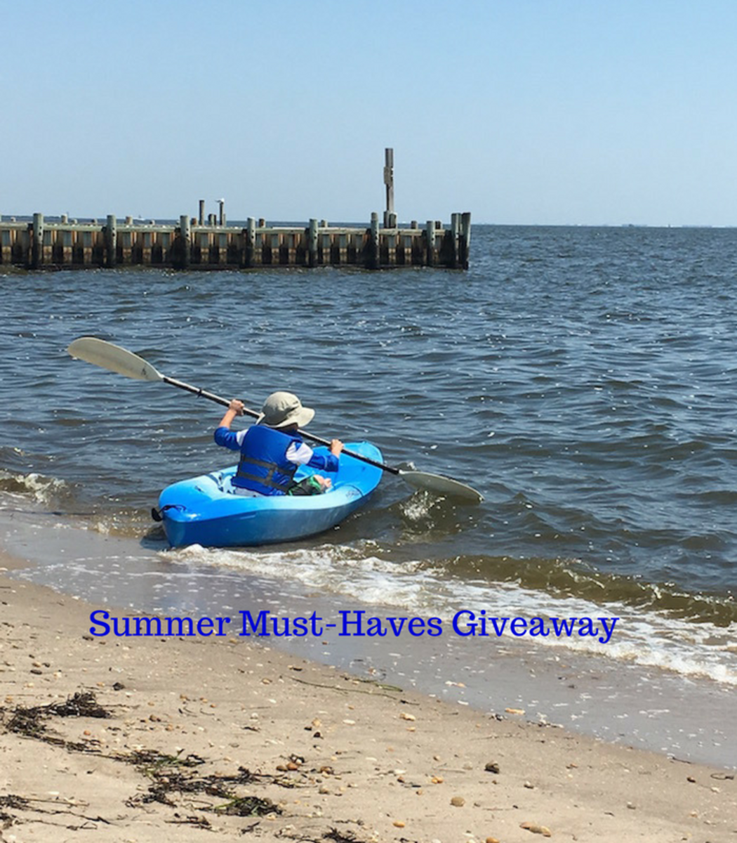 summer, giveaway, must haves, on trend must haves, miracle suit, eeboo, step 2, pediped, belkin