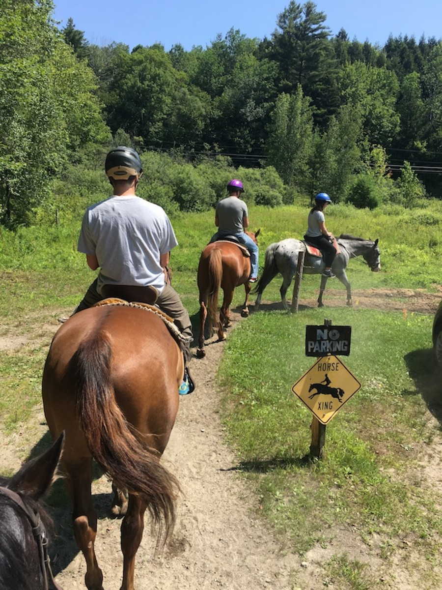 riding at topnotch stables