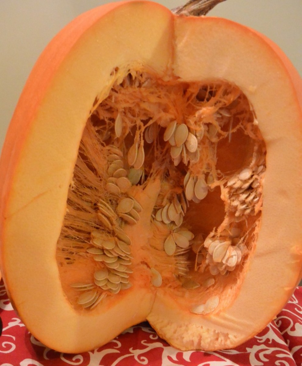 Pumpkin Flesh