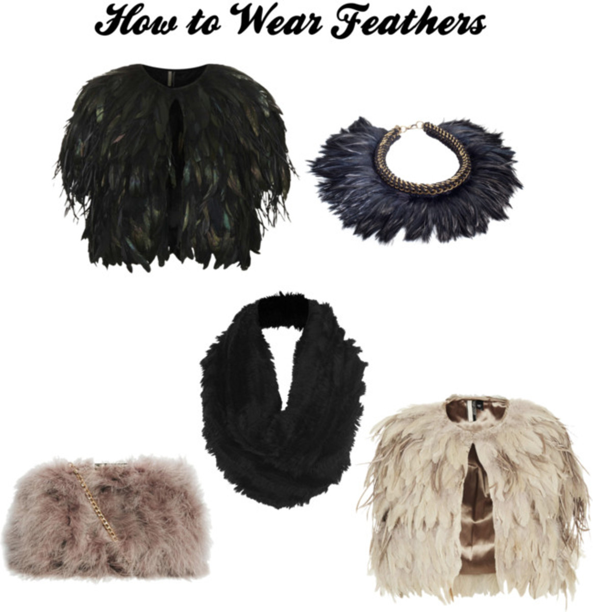 feather pieces