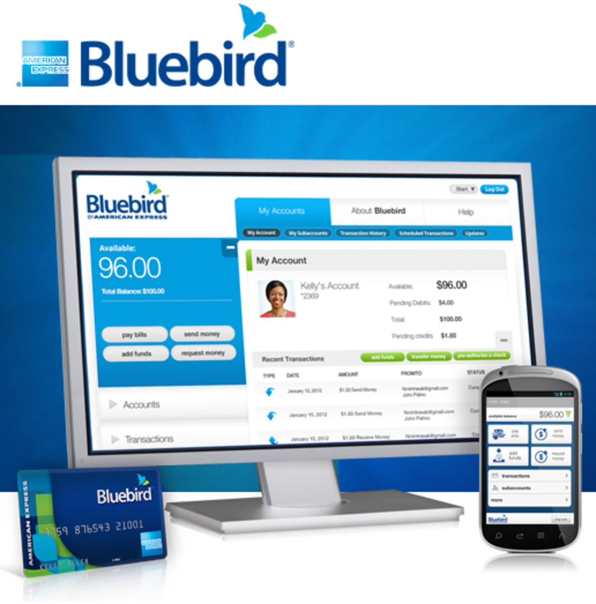 Bluebird Survey, American Express, Walmart