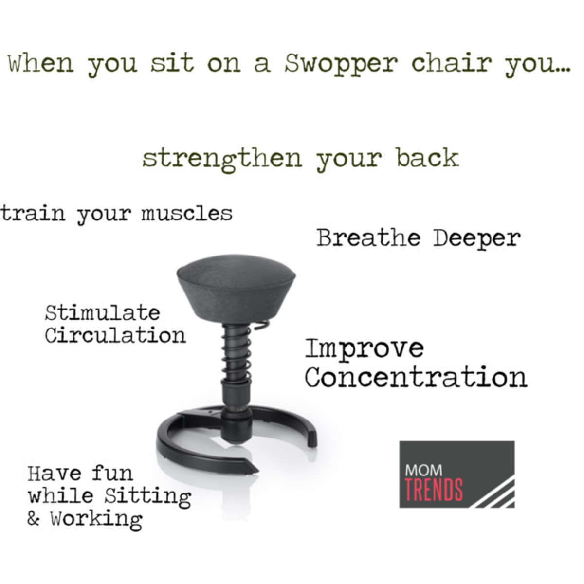 Swopper chair