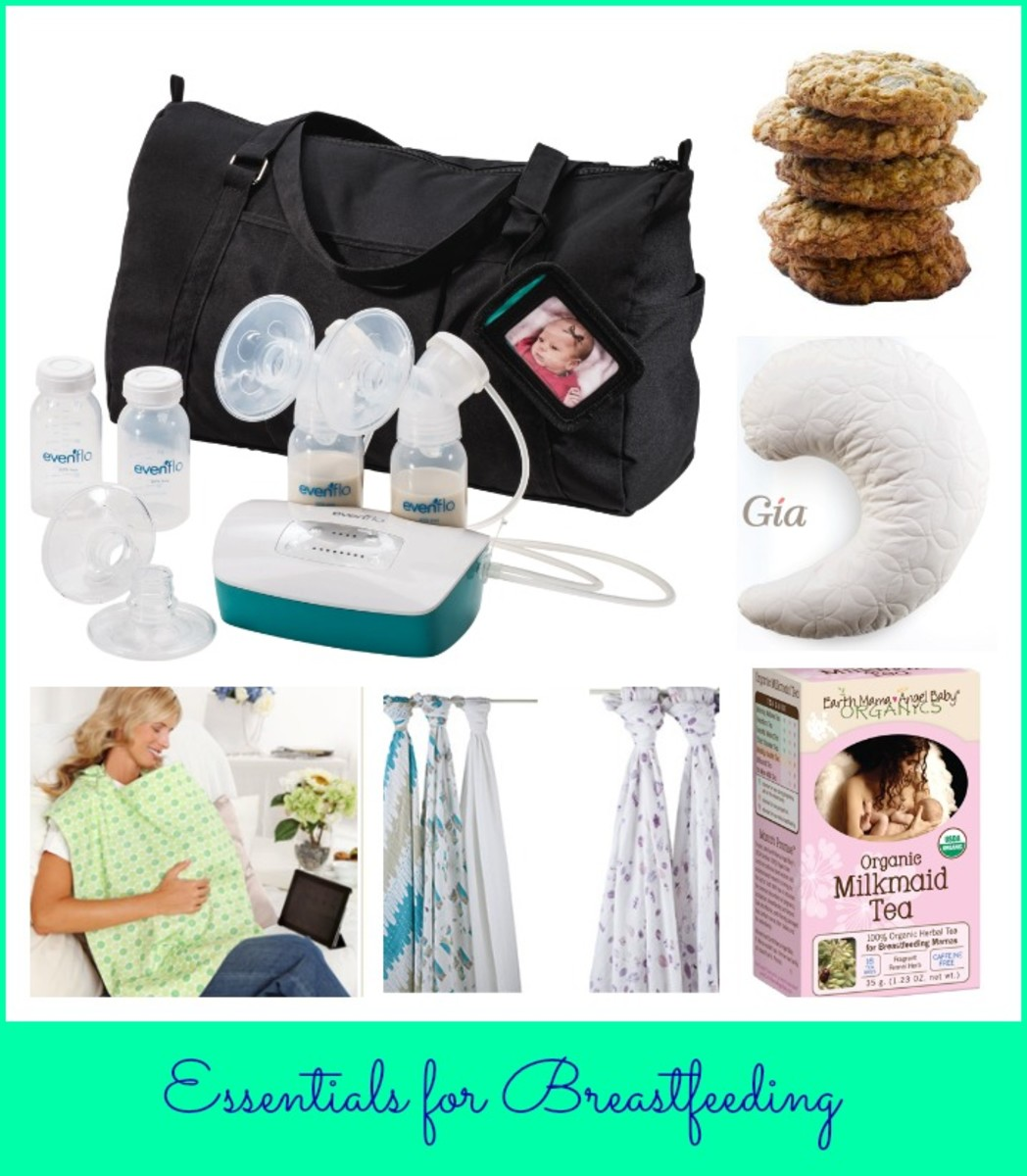 essentials for breastfeeding, evenflo, gia nursing pillow, earth mama angel baby tea, belly armor, aden & anais, milk makers cookies