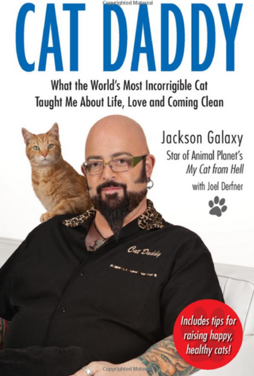 Cat Daddy Book