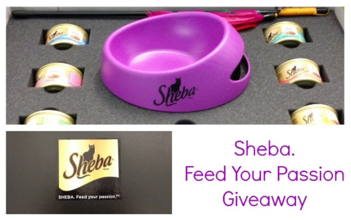 sheba-cat-food-prize