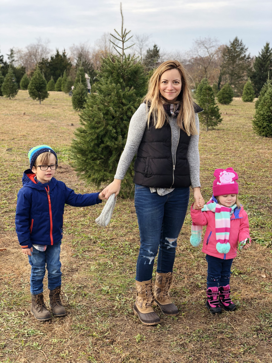 family tree cutting