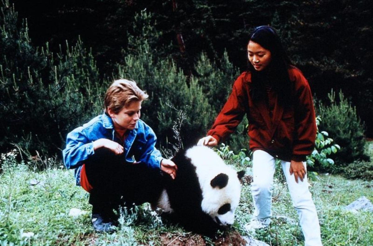 pandaadv