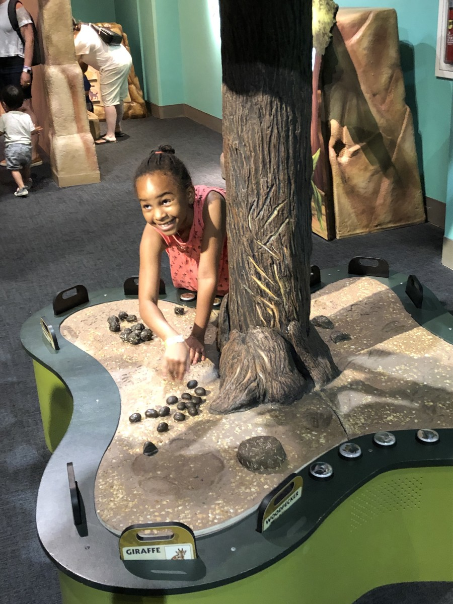What's New at Liberty Science Center #LSCSummerFun2019
